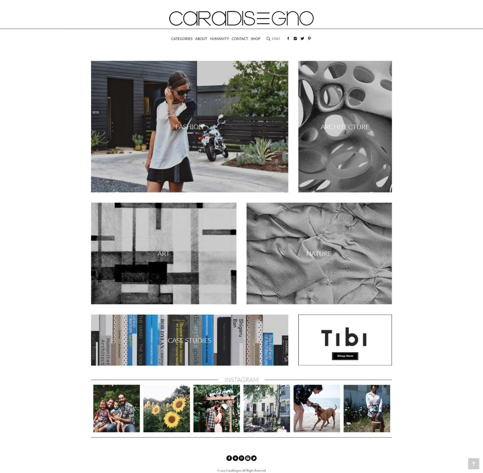 Caradisegno-Website-Design-Project-Home-Page