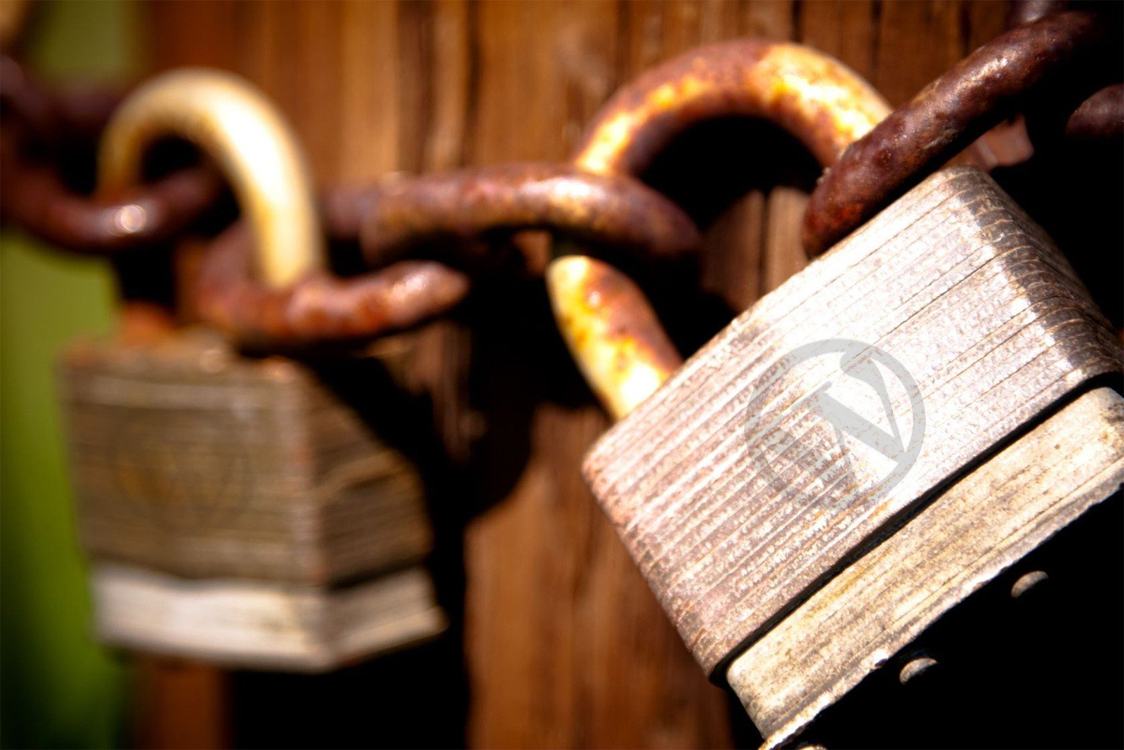 5 Ways to Protect and Secure Your WordPress Site