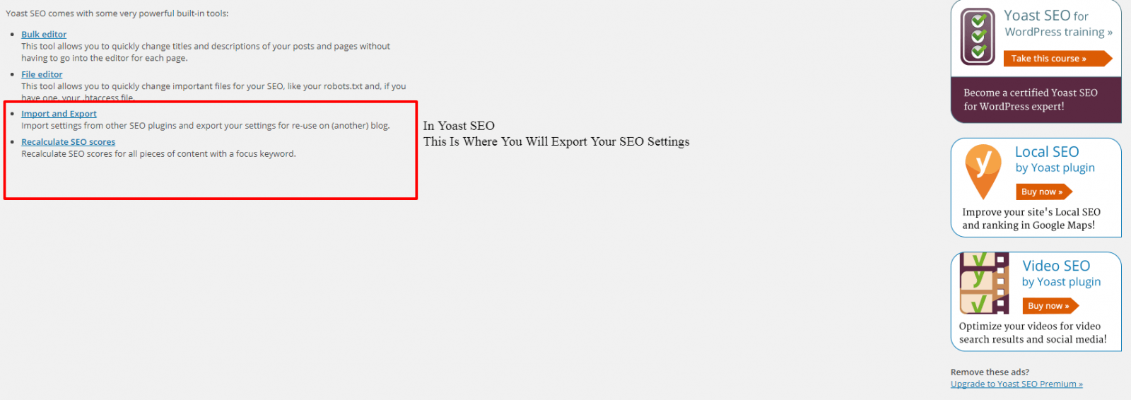 Tools Yoast SEO WordPress Backup